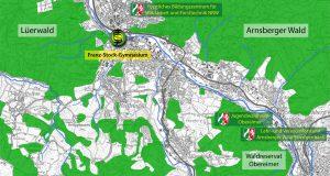 Waldflächen und behördliche Forsteinrichtungen im Raum Arnsberg