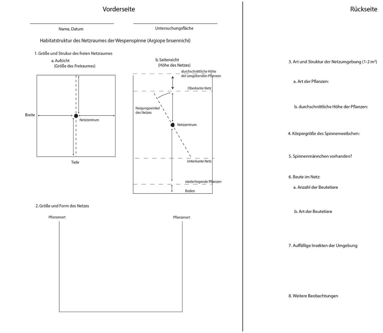 Grafik 9