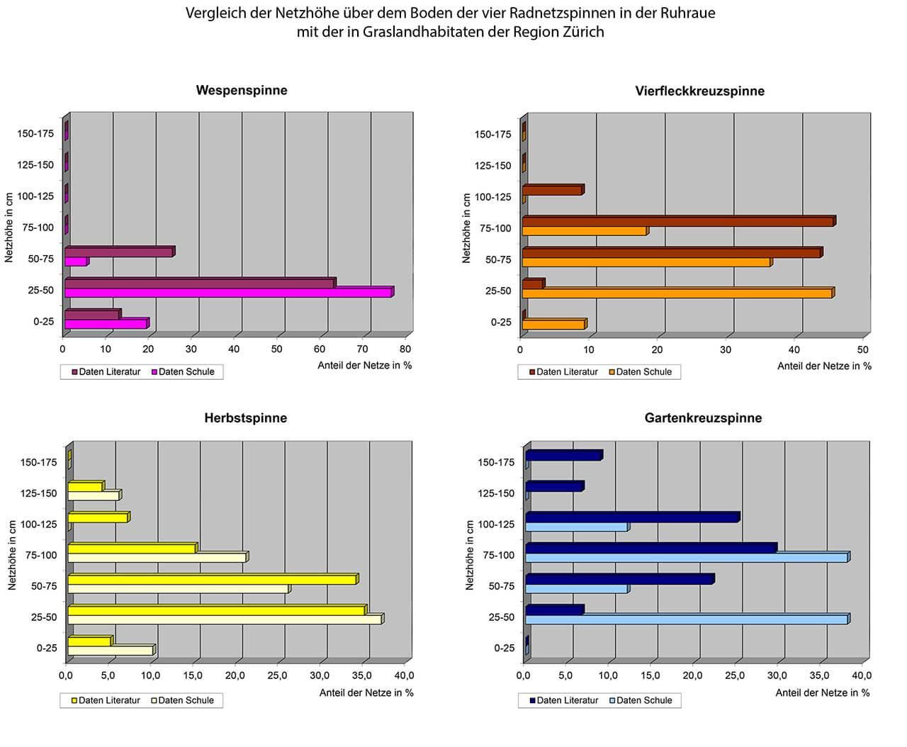 Grafik 11