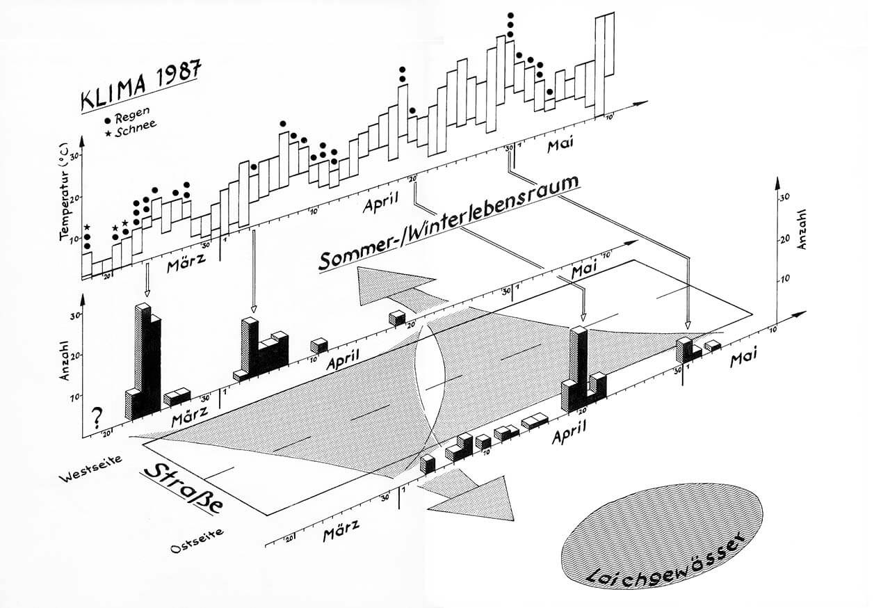 Grafik 16