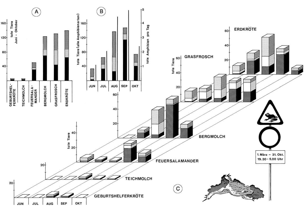 Grafik 17