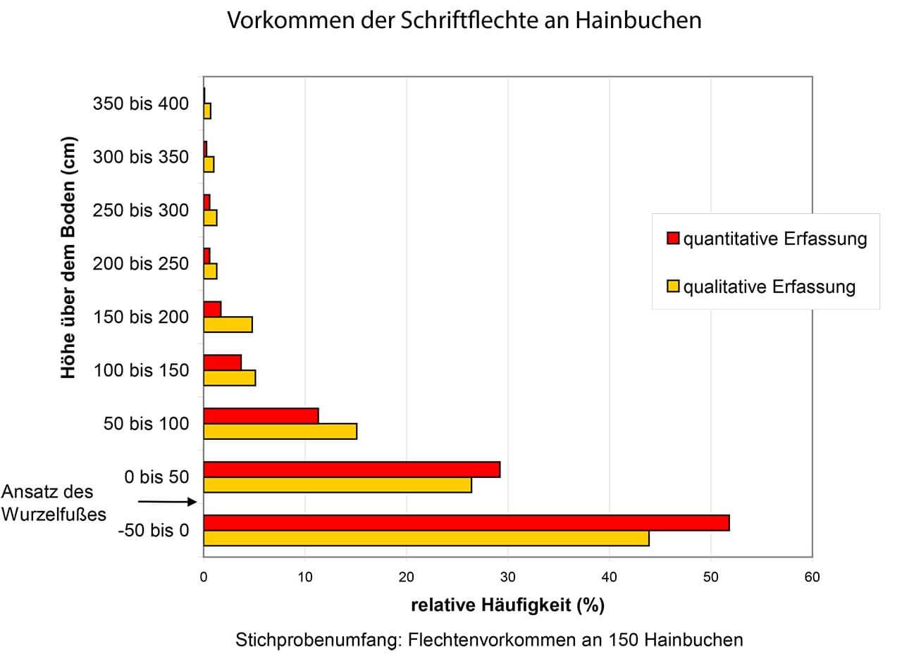 Grafik 12