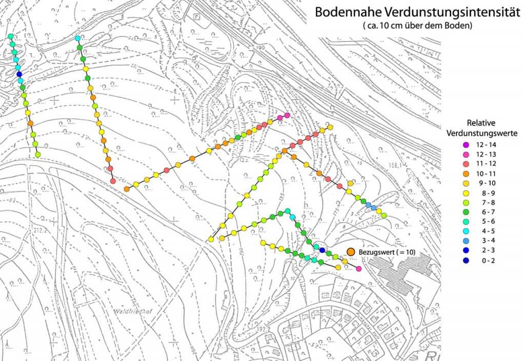 Messergebnis der bodennahen Verdunstung entlang mehrerer Transekts im Rumbecker Holz über ca. 24 Stunden.