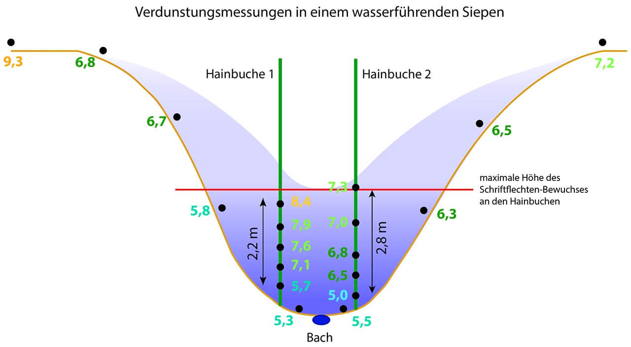 Grafik 19