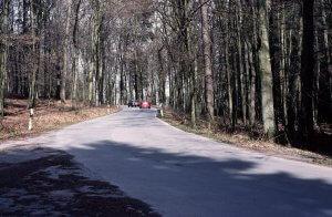Die ausgebaute Forststraße durch das Rumbecker Holz durchschneidet den Landlebensraum der Amphibien und ist deshalb eine große Gefahr für wandernde Amphibien.