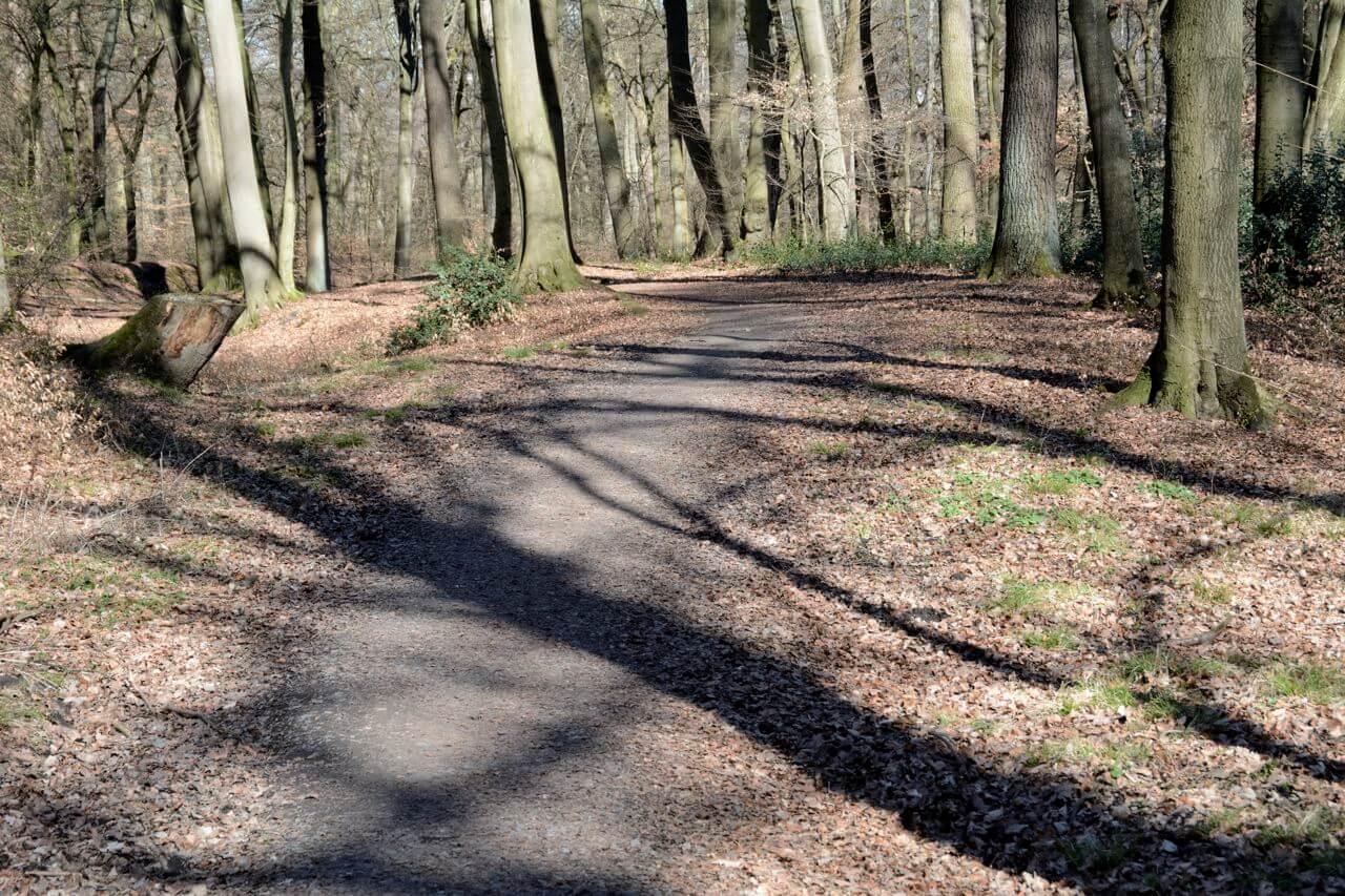 Wege und Pfade